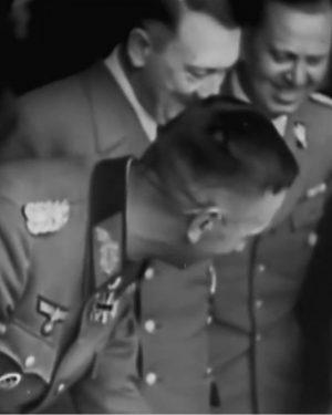 مستند طوفان شوروی-سواستوپل